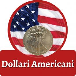 Articoli dollari Usa
